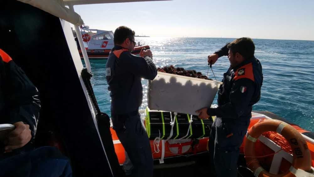 Sequestro di ricci della Guardia Costiera al Marangone presso Civitavecchia