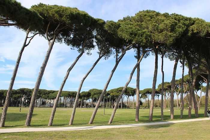 Fiumicino, partono oggi i lavori al ponticello di Villa Guglielmi